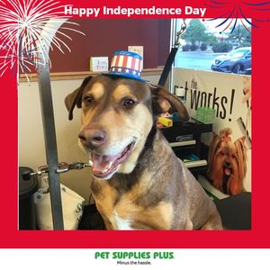Jessica W at Pet Supplies Plus - Montgomery